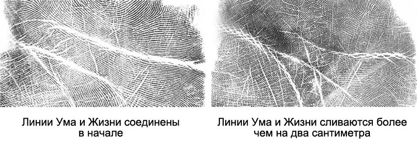линии головы и жизни