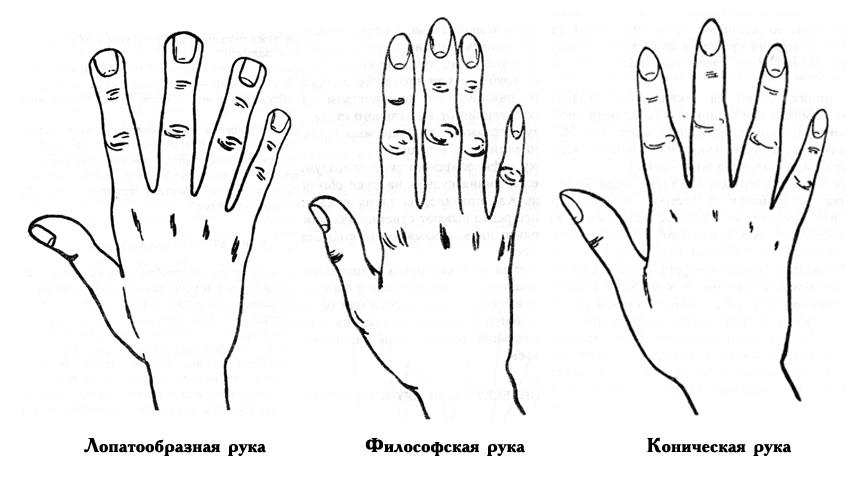 три типа рук